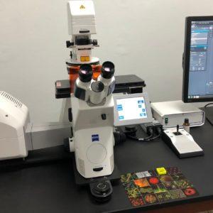 Microscopio Confocal Laser Carl Zeiss (405 nm)